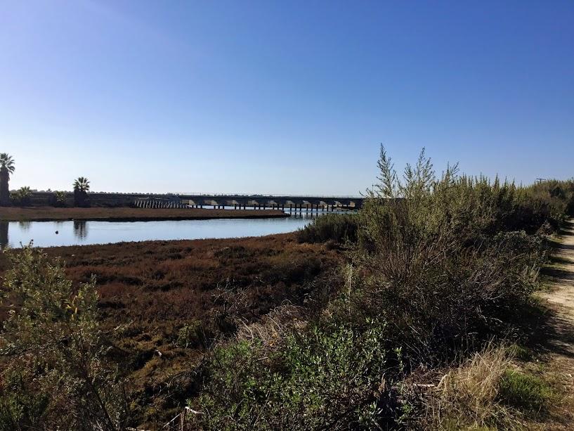 Railroad Tracks over Los Penasquitos Lagoon