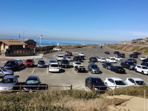 South Parking Lot Torrey Pines State Beach Natural Reserve