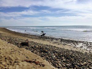 Old Man's Beach San Diego Beaches