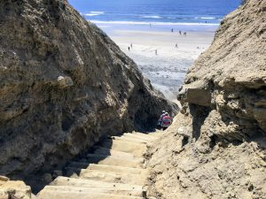 Blacks Beach Beaches of San Diego County
