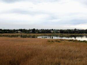 buena vista lagoon carlsbad view