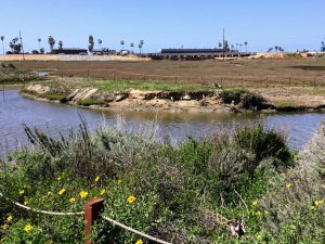 Beginning of San Elijo Lagoon Nature Center Trail