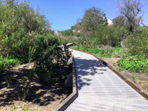 Inner San Elijo Lagoon Nature Trail