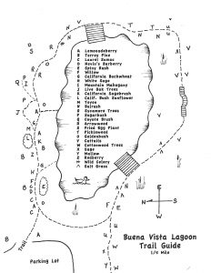 Buena Vista Lagoon Trail Guide
