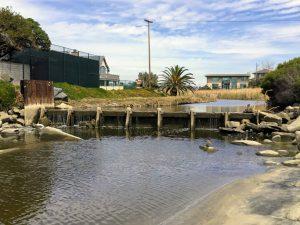 Buena Vista Lagoon Weir
