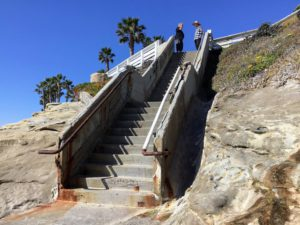 Stairway going up bluffs palm tree two men