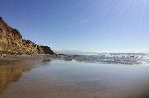Best Beaches La Jolla