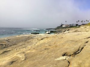Windansea shoreline best beaches of La Jolla