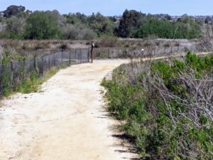End of Agua Hedionda Lagoon Discovery Center Trail