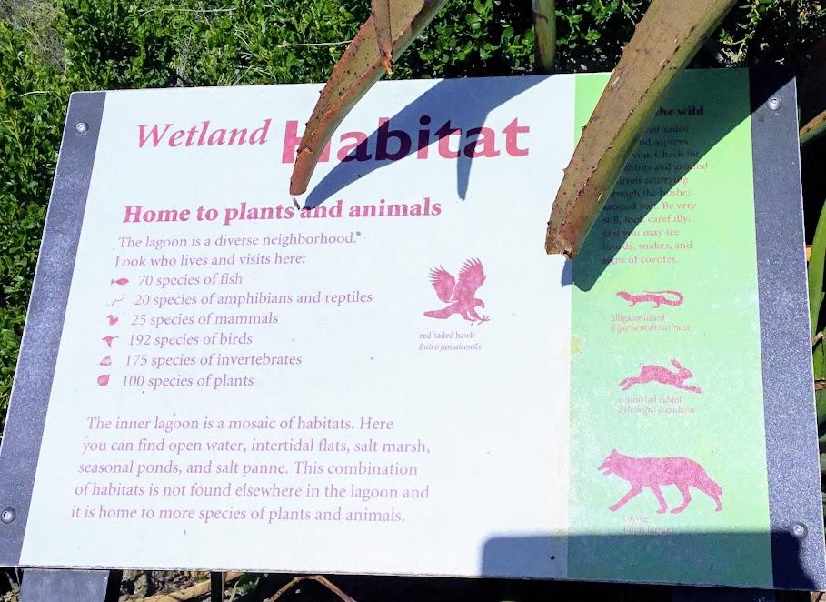 Wetland Habitat Sign Agua Hedionda Lagoon Discovery Center