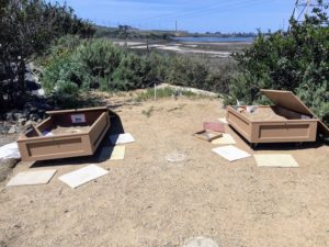 Two sand boxes at Agua Hedionda Lagoon Discovery Center