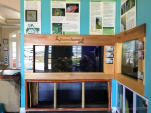 Fish Display with information posters