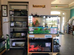 More reptile display tanks
