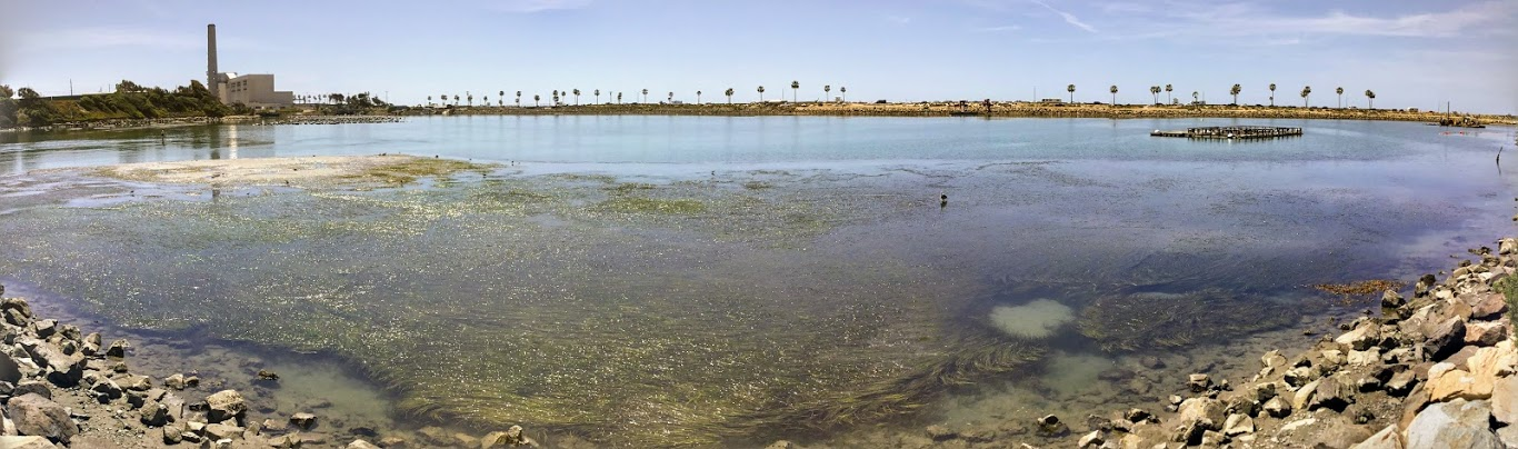 Panoramic-Agua Hedionda Lagoon