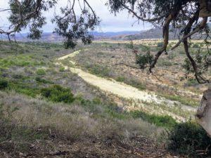 Panhe Nature Trail
