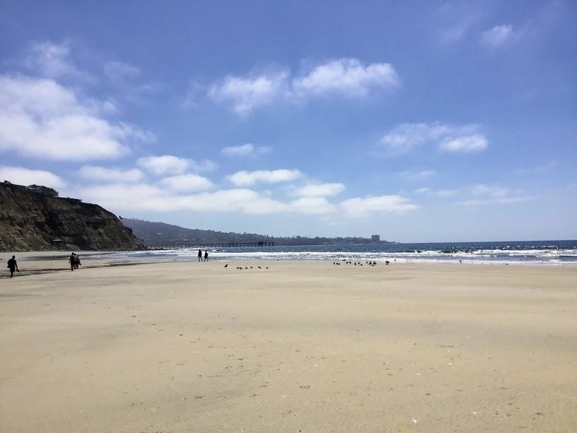 South View Black's Beach sandy shore