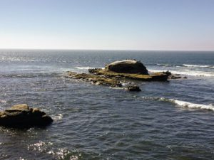 Bird Rock Beach San Diego Tide Pools