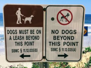 Del Mar Dog Sign Dog Friendly Beaches in San Diego