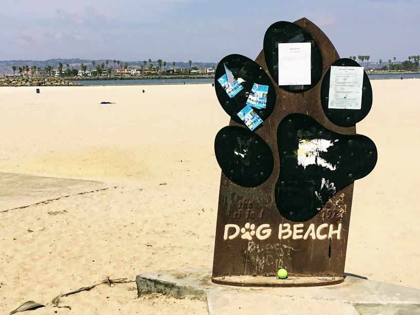 Dog Beach OB Sign Dog Friendly Beaches in San Diego