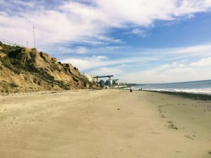 Dogpatch Beach Dog Friendly Beaches In San Diego