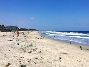 Imperial Beach Dog Friendly Beaches in San Diego