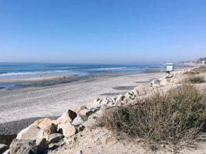 North View Torrey Pines State Beach