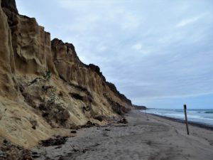 San Onofre Bluffs Campground up top beach below