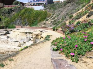 Santa Cruz Walkway San Diego Tide Pools