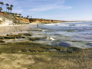 Terramar Beach San Diego Tide Pools