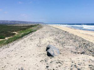 Tijuana Slough National Wildlife Refuge south view