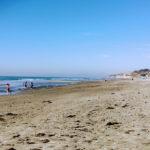 Torrey Pines State Beach North