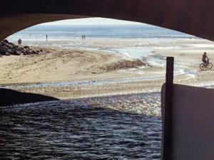 Under Highway Bridge Torrey Pines State Beach