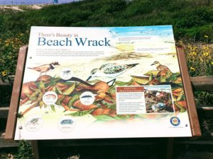 Beach Wrack Sign South Ponto Beach