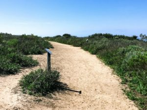 Biodiversity Trail Hidden Gems in San Diego