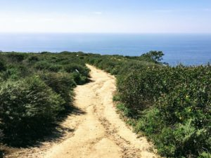 Biodiversity Trail 2 Hidden Gems in San Diego
