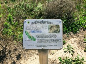 Biodiversity Trail sign beginning of trail
