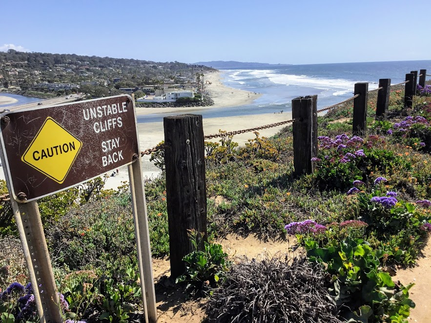 Del Mar Dog Beach Hidden Gems In San Diego