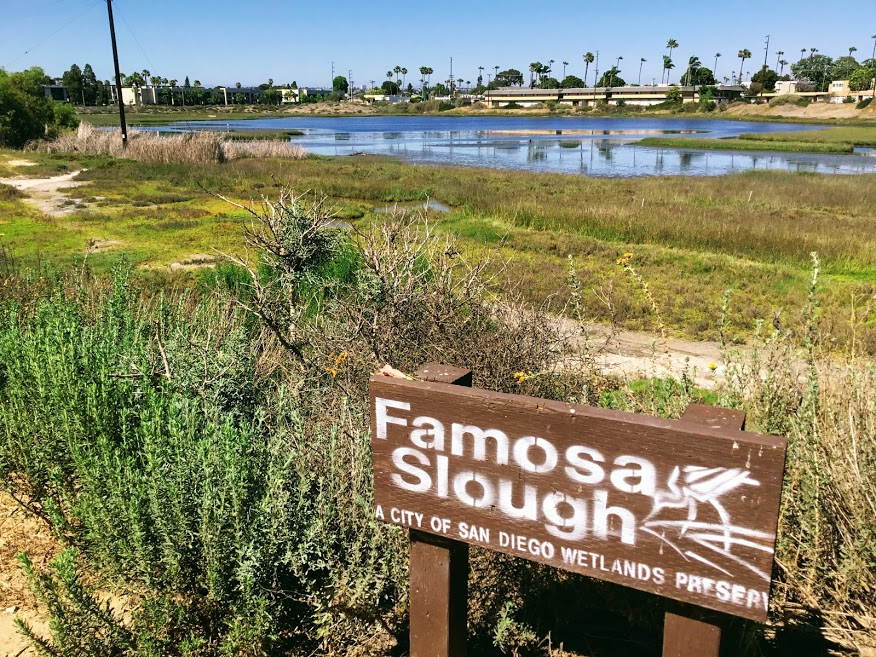 Famosa slough sign ocean beach california