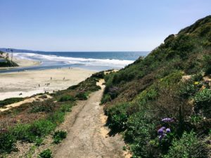 Halfway up bluff hidden gems in San Diego