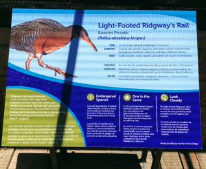 Light-footed Ridgeways Rail information sign