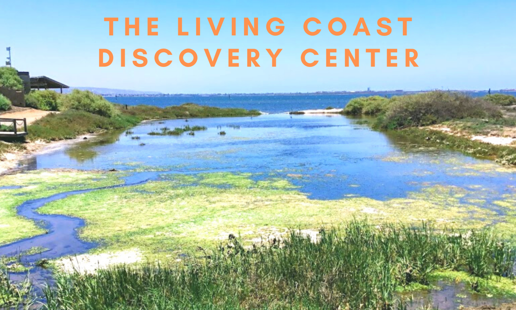Living Coast Discovery Center featured image san diego bay