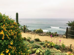 Meditation Garden Overlook cacti ocean view