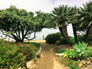 Meditation Garden west dirt path trees ocean