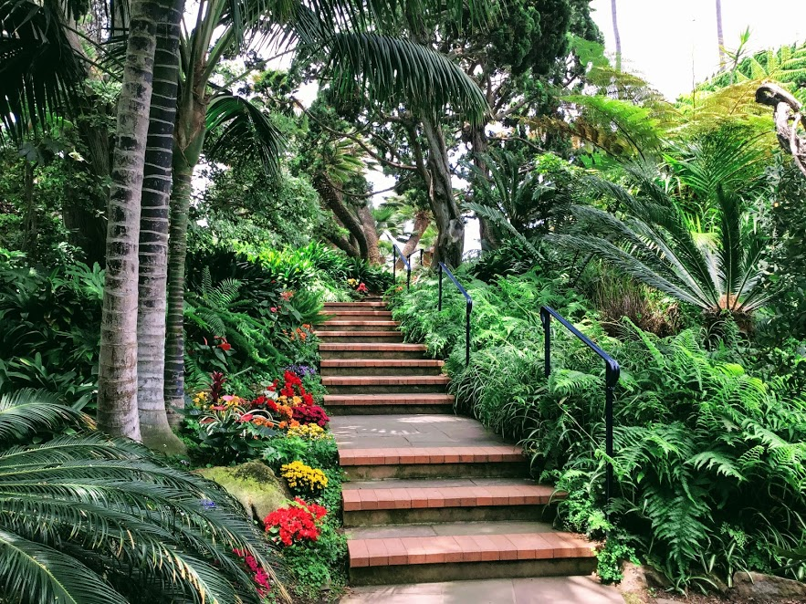 mediation garden hidden gem in San DIego