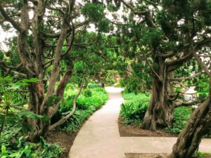 Meditation path hidden gems in San Diego