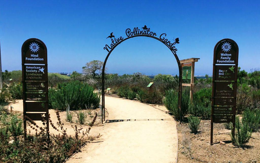 Native Pollinator Garden Living Coast Discovery Center