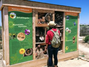 Native Pollinator Garden nests for bees insects