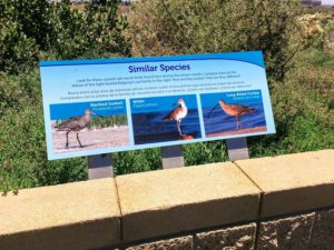 San Diego Bay Shorebirds information sign