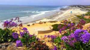 South Ponto Overlook Carlsbad State Beach