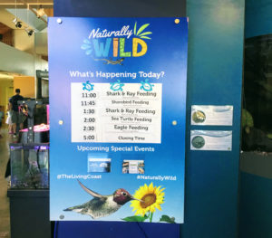 Special Events Sign Living Coast Discovery Center